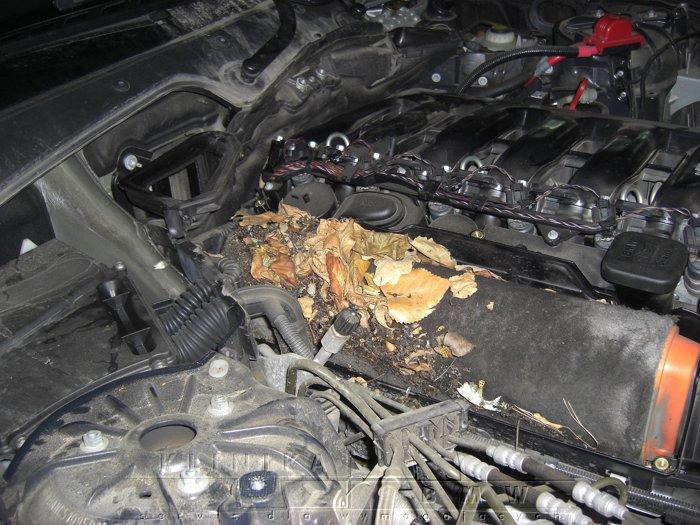 niewymieniony filtr w ASO BMW